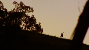 Two young fallow bucks dance in the evening light as the rut draws ever closer