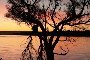 Coals Bay, Freycinet National Park, east coast Tassie