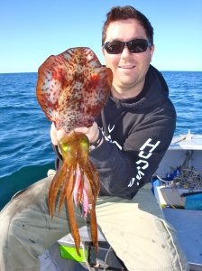 Alex large squid